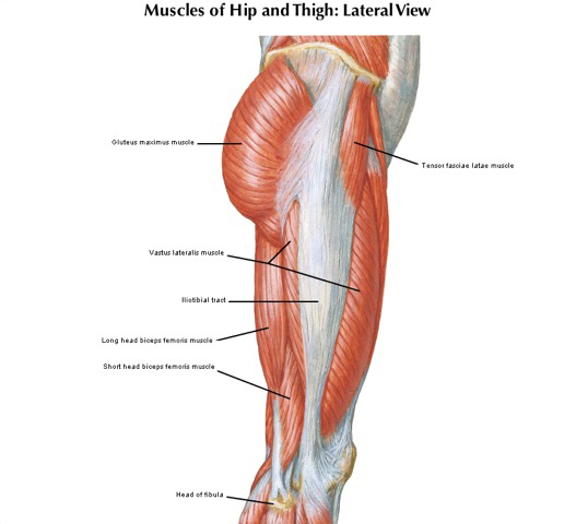 Lateral hip muscle tendinopathy run the streets